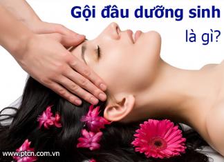 goi-dau-duong-sinh-ptcn-com-vn