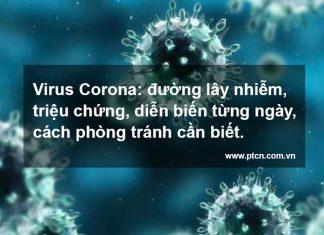 virus-corona-covid-19-ptcn-com-vn-1